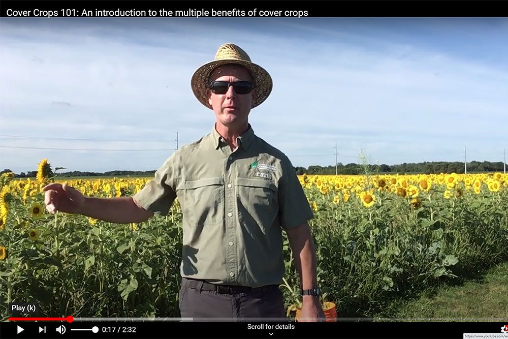 Ross Wilson, MSC; PAg; CCA-ON; Water and Soils Resource Coordinator, Ausable Bayfield Conservation, talks about the many benefits of cover crops and 'service crops.'